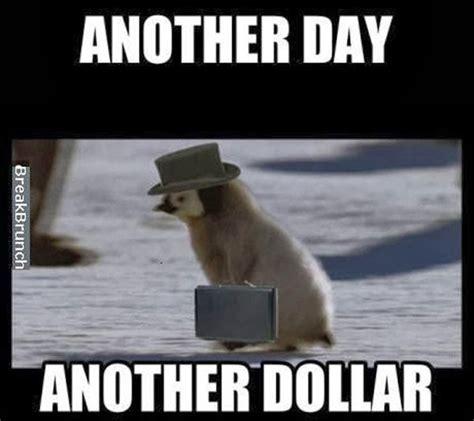 Meme Rege - funny penguin memes 28 images socially awkward awesome penguin funny meme funny memes