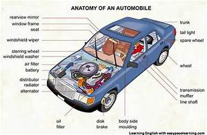 Learning The Vocabulary For Parts Of A Car Inside And Outside