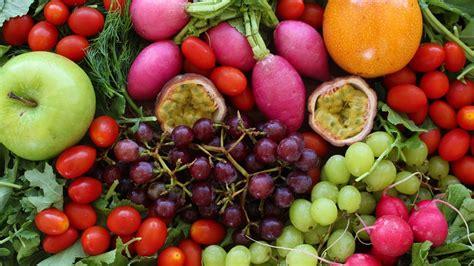 2 pi鐵es cuisine food is medicine doctrine of signatures