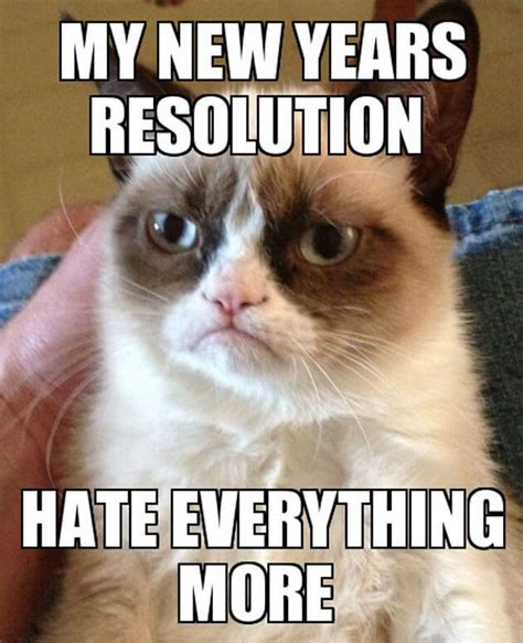 Grumpy Cat New Years Meme - 23 new years memes that will make you feel good about your failed ny resolutions