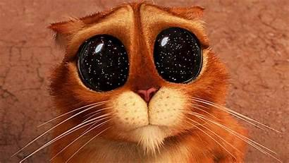 Gifs Gato Puss Boots Cool Botas Eyes