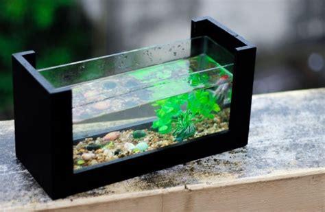 mengintip alat pembersih akuarium otomatis rumahliacom