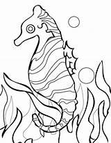 Coral Reef Coloring Pages Drawing Easy Barrier Seahorse Fish Drawings Clipart Sea Seaweed Printable Drawn Print Plants Getdrawings Getcolorings Clip sketch template