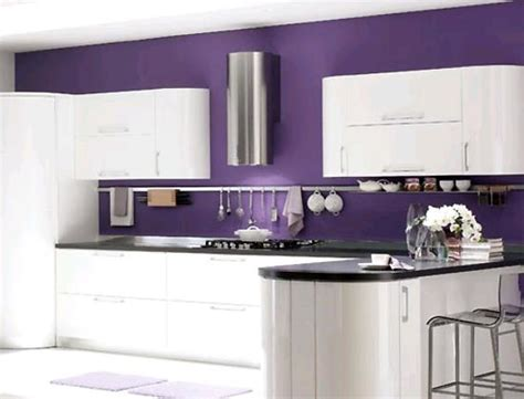 purple kitchens design ideas purple kitchen designs design decoration 4457
