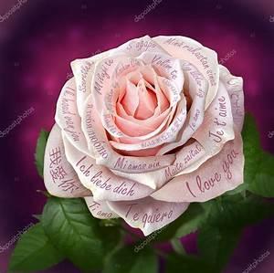 Schne Rosa Rose Mit Worten QuotIch Liebe Dichquot In Allen