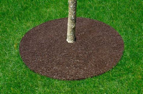 mulch matting rubber tree rings instead of mulch