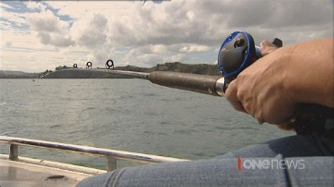 Recreational Fishing Boats Nz by New Research Says Recreational Fishing Adds Huge Money To