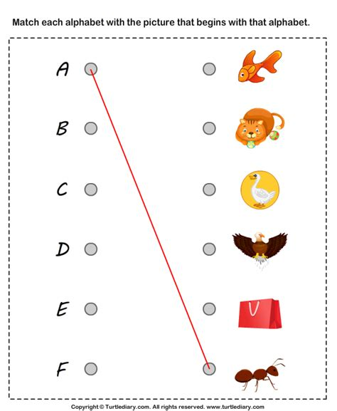 matching letters to a to f worksheet turtle diary