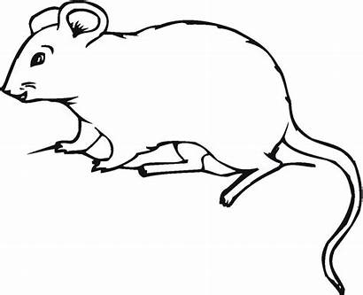 Mouse Coloring Pages Printable