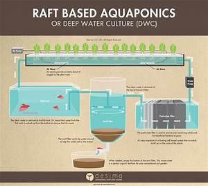473 Best Images About Aqua  Hydro  Quack