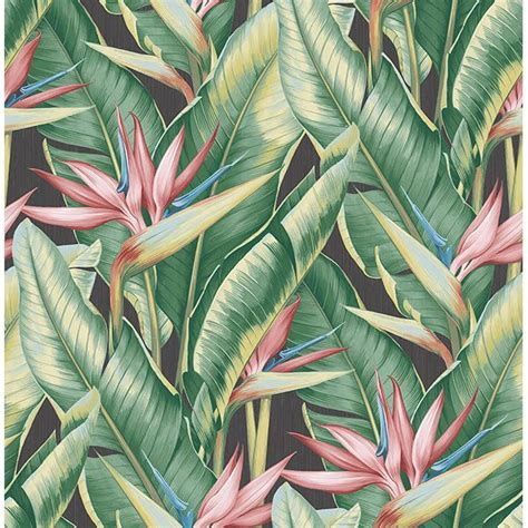 ps arcadia pink banana leaf wallpaper  kenneth james