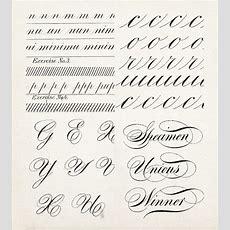 Calligraphy Alphabet  Pesquisa Google  Letters  Exercícios De Caligrafia, Fontes Para Convite