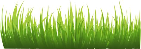 Grass Png Images, Pictures