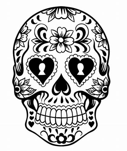 Skull Sugar Coloring Pages Scary Dead