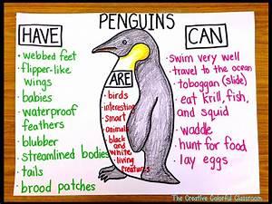 Number Bond Anchor Chart The Creative Colorful Classroom Penguins Penguins Penguins