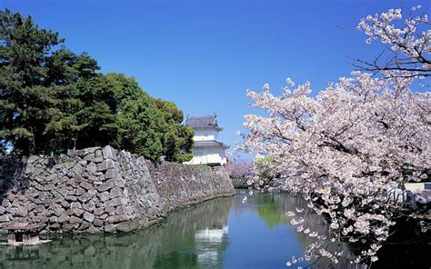 japan travel vacation japan country scenery wallpaper