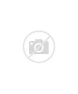 Ntb Oil Change Coupon >> Tidwell Tires Ntb Tire Oil Change Coupons