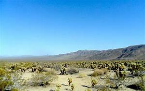 Bajada Geography Wikipedia