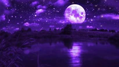 Purple Moon Windows