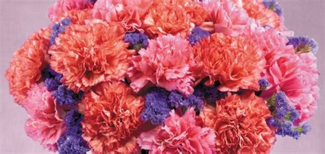 pick  perfect mothers day flowers proflowers blog