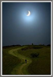536 best images about Magical Moon on Pinterest