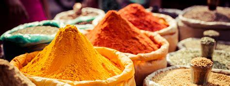 epice cuisine indian cuisine nouvini india