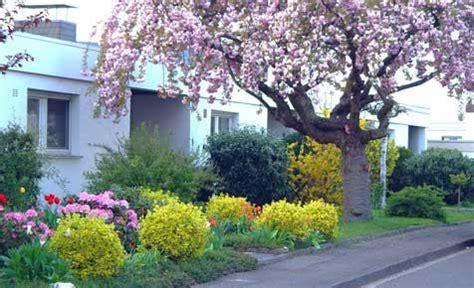 vorgarten gestalten pflegeleicht vorgarten selbst de