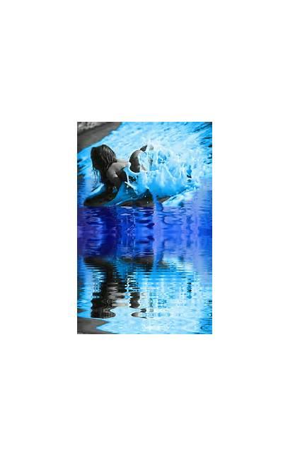Water Con Agua Reflecting Gifs Efectos Colorful