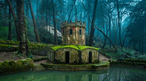 sintra portugal nature wallpaper
