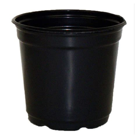 5 quot taller gloss black flower pot