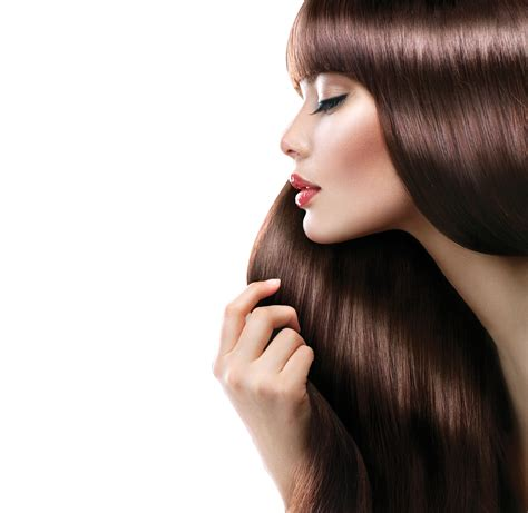 hair png transparent hair png images pluspng