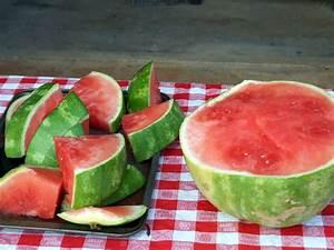 Ananas Schneiden Gerät : wassermelonen slicer melonen kinderleicht aufschneiden plantura ~ Watch28wear.com Haus und Dekorationen