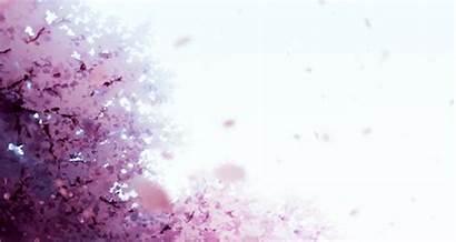 Cherry Blossom Sakura Tree Gifs Trees Anime
