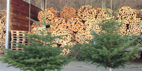 weihnachtsbaum verkauf 2017 stadt lenzburg