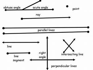 HTS 3rd Grade Technology Blog: Pixie Geometry Drawings