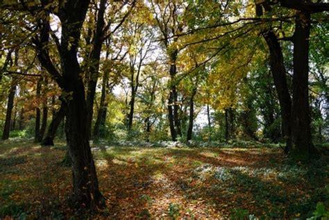 Waldbaden  Der Innere Und Der äussere Garten