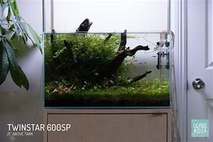 Guide To Choosing The Right Planted Aquarium Led Light