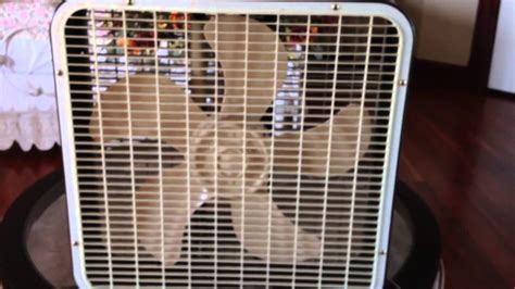 church fans for sale second and three quarters generation lakewood box fan