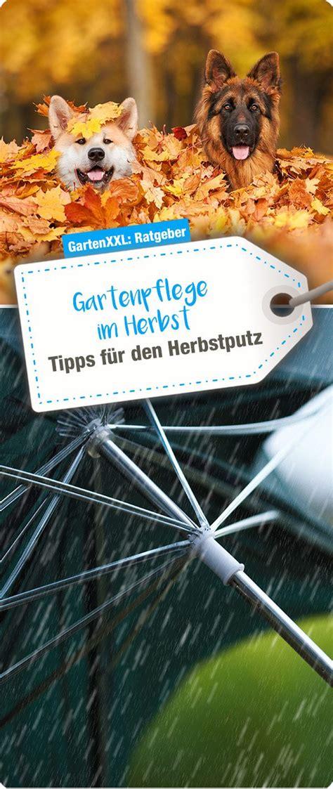 Tipps Für Den Garten Im Herbst by Gartenpflege Im Herbst Tipps F 252 R Den Herbstputz Garten