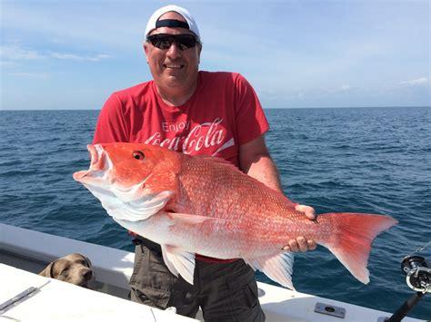 snapper canaveral fishing port fish deep sea florida beach cape cocoa orlando charter report bottom offshore technique learn boat wikipedia