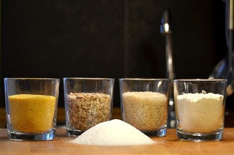 kohlenhydratstoffwechsel tierheilpraktiker stuttgart
