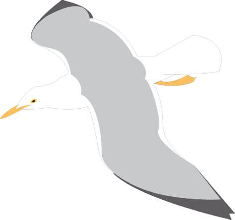 Seagull Clipart Seagull Clip At Clker Vector Clip