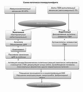Рекомендации европейского общества кардиологов артериальная гипертония