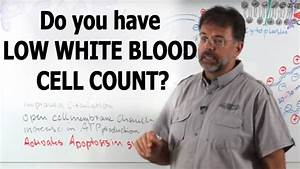 low red blood cell count causes - DriverLayer Search Engine