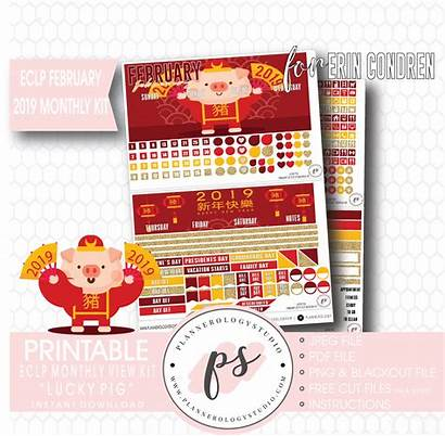 Chinese Lunar Printable Pig Lucky Monthly Kit