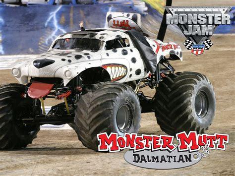 monster mutt truck videos monster mutt monster truck bing images