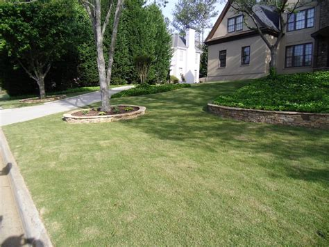 Zoysia Grass Sod Prices