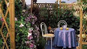 Sichtschutz Im Garten : nat rlicher sichtschutz f r mehr privatsph re im garten ~ A.2002-acura-tl-radio.info Haus und Dekorationen