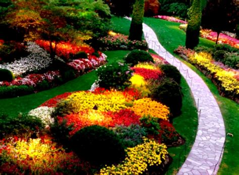 ideas for landscaping landscape ideas for backyard simple design 24 landscaping modern florida university of south