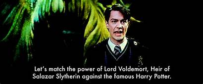 Tom Riddle Harry Voldemort Slytherin Potter Marvolo